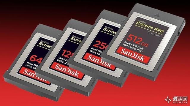 Sandisk feastest chip