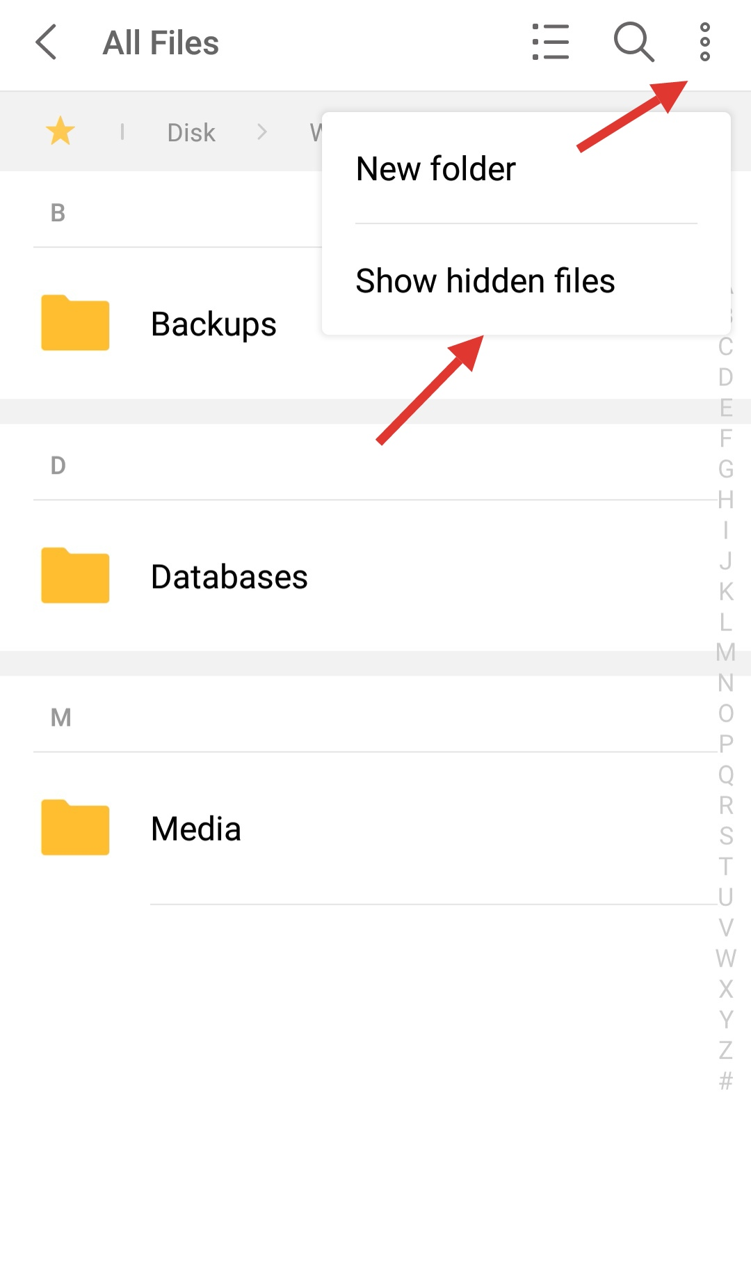 enable show hidden files