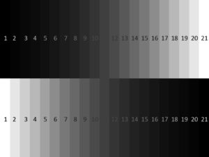 Grayscale value chart after focusing on brigher object