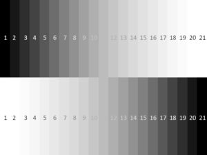 Grayscale value chart after focusing on darker object